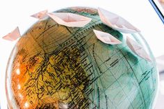 Traveling the world on a paper boat