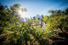 A WEDDING AT SEA CIDER | JEN STEELE