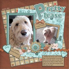 """Pretty Please"" Pet Page...browns & blues...by Art-Teacher."