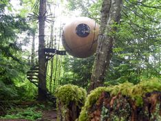 """Unusual Homes: Free Spirit Spheres, """"treehouses for adults,"""" are handmade from local wood and suspended from the tree canopy in the rainforest of Canada's Vancouver Island. Retreats for relaxation for Kat Dever Treehouse Hotel, Tree Canopy, Shipping Container Homes, Shipping Containers, Unusual Homes, Covered Pergola, Vancouver Island, Construction, Green Building"""