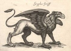 A Griffen is a Mesopotamian mythical creature that has a lion's body, an eagle's head and wings, and sometimes the tail of a snake.