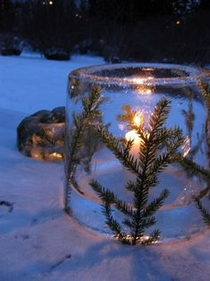 On friday I asked your ideas on what I should do with a Christmas tree that is s. On friday I asked your ideas on what I should do with a Christmas tree that is so healthy and nice Outdoor Christmas, Winter Christmas, Winter Holidays, All Things Christmas, Christmas Holidays, Christmas Crafts, Christmas Decorations, Winter Diy, Winter Garden
