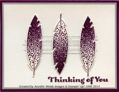 Sunflower Stamper: Blackberry Feather Thinking of You