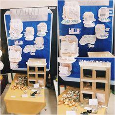 "Material Display ""Cangkang Kulit Kerang Darah"" Farkhan K. Amriel/Arsitektur/1406573343 Nur Azzahra M./Arsitektur/1406574560 Niken Rahadiani M./Arsitektur Int./1406530722"