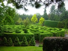 botanical gardens, with fun features like this maze at the VanDusen Botanical Garden in Vancouver, or just with beautiful landscaping - Gardening Decorations Garden Hedges, Topiary Garden, Garden Art, Garden Landscaping, Garden Design, Cacti Garden, Formal Gardens, Outdoor Gardens, Amazing Gardens