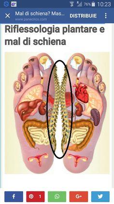 Refleksologia, aby pomóc w utrzymaniu równowag Wellness Fitness, Yoga Fitness, Health And Wellness, Health Fitness, Acupressure Treatment, Acupressure Points, Reflexology Massage, Foot Massage, Massage Techniques