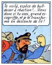 capitaine haddock 3