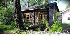 Safari, Cow, Cabin, House Styles, Plants, Home Decor, Decoration Home, Room Decor, Cabins