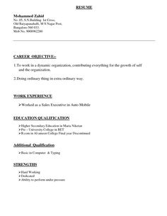 Resume Types Volunteer  Resume Format And Resume Examples