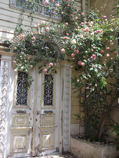 lovely door with pink roses. Kadıkoy /Istanbul
