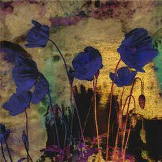 Odilon Redon「Blue Poppies」