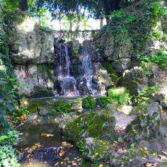 A small man-made waterfall in the Volksgarten. Der künstlich angelegte Wasserfall im Volksgarten. Volksgarten Köln Südstadt Cologne Outdoors