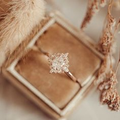 Dream Engagement Rings, Wedding Engagement, Wedding Rings, Perfect Wedding, Dream Wedding, Wedding Day, Daimon Salvatore, Wedding Goals, Ring Verlobung