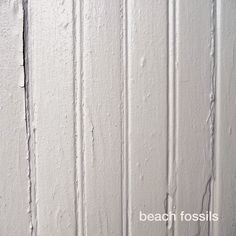 LA BOUTIQUE: BEACH FOSSILS
