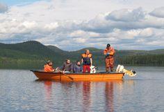 Verkkokalastusta kesäkuussa Pellon Miekojärvellä Länsi-Lapissa