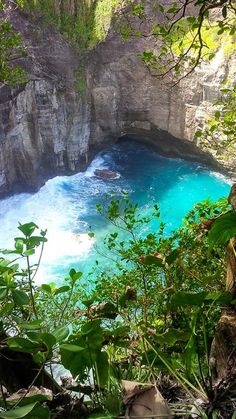 Dive into Dominica and experience the excitement of Caribbean diving. See for yourself why we are one of the top dive destinations not just in the Caribbean, but in the world. Barbados, Jamaica, Santa Lucia, Cayman Islands, Beautiful Islands, Beautiful World, Belize, Puerto Rico, Places To Travel