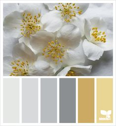 Ideas For Living Room Colors Schemes Yellow Design Seeds Bedroom Color Schemes, Bedroom Colors, Colour Schemes, Color Combos, Gray Bedroom, Master Bedrooms, Bedroom Ideas, Color Schemes With Gray, Cottage Bedrooms