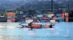 do Porto para Gaia Gaia, Painting, Community, Digital Art, Pictures, Painting Art, Paintings, Draw