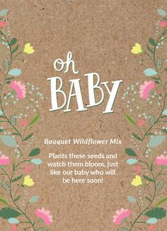 """Baby Shower """"Oh Baby"""" Seed Favor"""