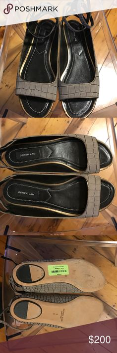 Derek Lam Shoes Brand new Derek Lam pace croc embossed sandals. Size 8. Made in Italy. These sandals have a strap closure with gold trim. Derek Lam Shoes Sandals