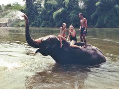 Kanchanaburi, Thailand / Elephant trekking/bathing