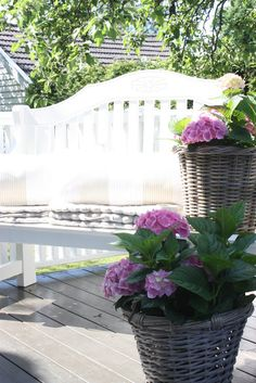 Comfortable seating areas on the porch for guests, and a few pots filled with beautiful flowers. Outdoor Landscaping, Outdoor Plants, Outdoor Spaces, Outdoor Gardens, Outdoor Living, Outdoor Decor, Outside Seating Area, Outside Room, Seating Areas