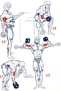 Exercices Biceps – Musculation – FORUM Forme & Sport – Body Workouts For Cutting Body Fat – The Best Exercises for a Full-Body Workout Best Workout Routine, Gym Workout Tips, Fun Workouts, Workout Videos, Exercise Routines, Pilates Workout, Bodybuilding Training, Bodybuilding Workouts, Men's Bodybuilding
