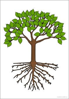 Students can add their own leaves when the learn something about the environment topic. Giant tree picture for display - SparkleBox Bee Pictures, Witch Pictures, Castle Pictures, Butterfly Pictures, Superhero Pictures, Dinosaur Pictures, Elephant Pictures, Caterpillar Pictures, Classroom Wall Displays