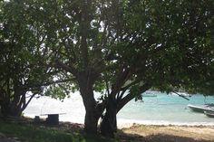 St. Thomas, USVI, oceanfront