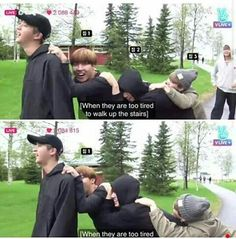 Baby ducklings and eomma Jin