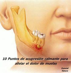 Las 56 Mejores Imágenes De Imagenes De Muelas Teeth Tooth Fairy Y