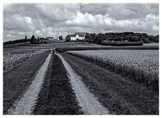 Jammerbugten - Børglum Kloster lige ved Hærvejen