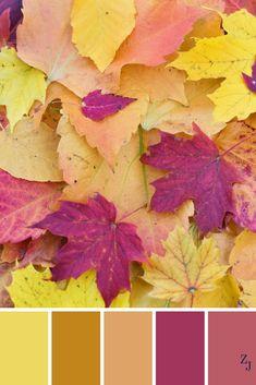 ZJ Colour Palette 666 #colourpalette #colourinspiration Colour Pallette, Colour Schemes, Color Combinations, Color Balance, Design Seeds, World Of Color, Color Blending, Color Stories, Color Swatches