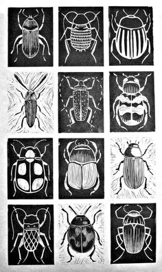 printmaking ideas linoleum scratch art idea Black and white. Chalk and charcoal. Kratz Kunst, Silkscreen, Bug Art, Scratch Art, Ecole Art, Insect Art, Beetle Insect, Linocut Prints, Art Classroom