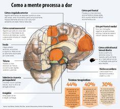 A dor é um fenômeno neurológico pluridimensional.