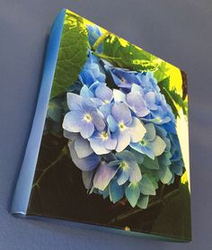 Blue white hydrangea Stretched Canvas by BlueHydrangeaCanvas Stretched Canvas Prints, Hydrangea, Blue And White, Unique Jewelry, Handmade Gifts, Etsy, Vintage, Kid Craft Gifts, Craft Gifts