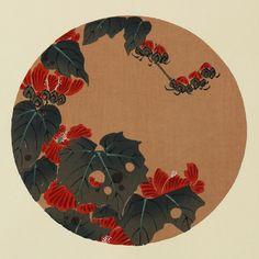 伊藤若冲『蜀葵(たちあおい)』-木版画(額装もできます) - 京都 木版画の販売 Winds!芸艸堂(うんそうどう)/Ukiyo-e, Woodblock print - Winds! UNSODO
