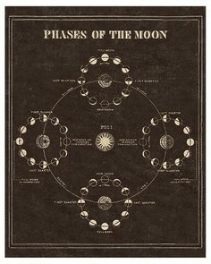 Vintage Reproduction Astronomy Moon Phases Print