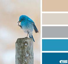 bluebird @ https://s-media-cache-ak0.pinimg.com/originals/d0/96/2e/d0962ee3e3f2262ec92d1799a35eb338.jpg