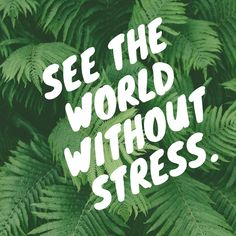 Stress is a typical reaction to troublesome circumstances. We frequently confound it as some type of mental weight caused because of our own powerlessness to manage things. In any case, that is not what it is. Stress isn't an activity, it's a response. Stress is our response to different outside components. Read more. #Sress #Manage_Stress #reduce_stress #work_stress #psychological_stress #Help_your_Stress #affiliate #sponsored Impact Of Stress, Work Stress, Reduce Stress, Types Of Stress, Sources Of Stress, Feeling Stressed, How Are You Feeling, Psychological Stress, Just Be Happy