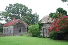1810 Federal – Greenville, NC