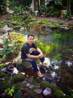 Ketika sesuatu yg pernah di hayalkan terwujud natural pond moss garden aquatic plants