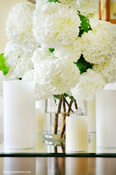 My Snowball Tree Love Story - At The Picket Fence