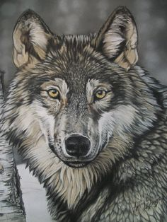 11x14 portrait of a Wolf by AudreysPastels on Etsy | Original pastel painting of wolf framed and matted. ALAPetArt.com