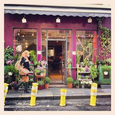 Flower shop in Paris : Lea Flores fleuriste |  119, rue de Grenelle 75007 Paris Flower Shops, Table Decorations, Plants, Flowers, Flower Stores, Plant, Florists, Dinner Table Decorations, Planets