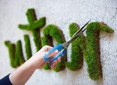 selber Moos Graffiti machen