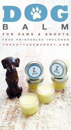 A fabulous quick and easy Dog Balm Recipe that you can use on your Dogs paws and snout. via Dog Balm. A fabulous quick and easy Dog Balm Recipe that you can use on your Dogs paws and snout. Diy Pet, Diy Dog Toys, Food Dog, Dog Care Tips, Homemade Dog, Diy Stuffed Animals, Doge, Dog Grooming, Dog Treats