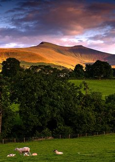 Excellent photo of the last sun on the Brecon Beacons. Pen-y-fan and Corn Du. Wales Uk, South Wales, Travel Around The World, Around The Worlds, Sir Anthony, Brecon Beacons, British Isles, Great Britain, Beautiful Landscapes