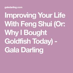 Improving Your Life With Feng Shui (Or: Why I Bought Goldfish Today) - Gala Darling