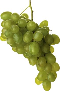This high quality free PNG image without any background is about grape, berry, grapes, fruit and green grapes. Green Grapes, Food Crafts, Clipart, Free Pictures, Free Stock Photos, Art Images, Beautiful Flowers, Wine, Fruit